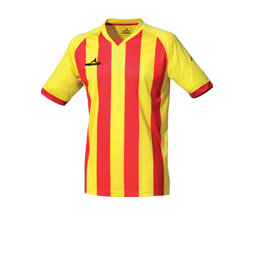 Camiseta Champions